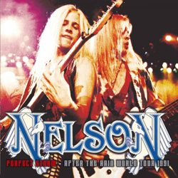 nelson_-_perfect_storm_-_after_the_rain_world_tour_1991_artwork